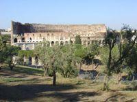 Колизей с Палатинского холма