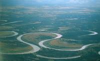 Меандр (изгиб) русла реки