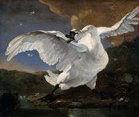 Испуганный лебедь (Ян Асселин, 1860 г.)